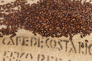 Up to 15 lbs Costa Rica SHB EP Tarrazu La Pastora Premium Arabica Coffee Beans