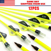 "12Pcs Archery Carbon Hunting Target Arrows 30"" SP500 For Compound/Recurve Bow US"