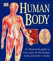 The Human Body  Good