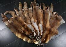 6116 Europaen Red Fox Skins - natural | Europäische naturelle Echt Rotfuchsfelle