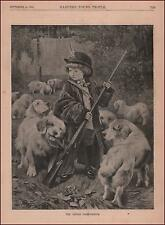 Clumber Spaniel Dogs Play Hunting with Little Boy, Antique Print Authentic 1886