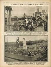 Jardin Garden Toits New-York USA/Plateau de Californie Chemin des Dames 1917 WWI