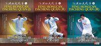 Chinese Kungfu Dacheng Quan ( Yi Quan ) Kung fu Series by Feng Hongcan 4DVDs