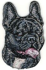 """1 3/8"""" x 2"""" French Bulldog Dog Breed Embroidery Patch"""