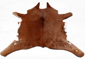 """Rare Cowhide Rugs Calf Hide Cow Skin Rug (25""""x27"""") Soft Brown & White CH8499"""