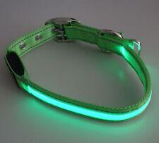 2 Stück LED Hunde Halsband Grün 40-50 cm gelb grüner Leuchtstreifen Leuchtband