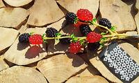 12 Brombeeren am Ast Attrappen Dekoration Kunstobst Obst  Dekoobst Beeren Rot