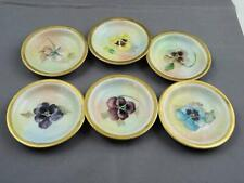 6 The Baronial Bavaria Hand Painted Floral Butter Pats