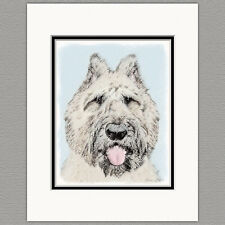 Bouvier des Flandres Dog Original Art Print 8x10 Matted to 11x14