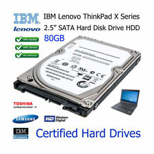 Hard disk interni da 80GB IBM