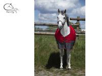 Equitheme Tyrex 1200D 150g Filling Mid Season Standard Neck Horse Turnout Rug
