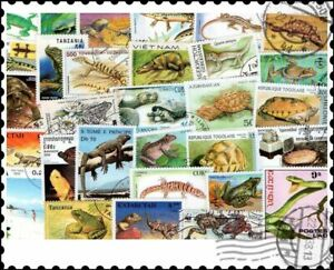 Reptiles : 50 Different Stamps Collection