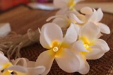 White Frangipani Flower LED Fairy Light String Mains Powered