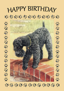 KERRY BLUE TERRIER DOG LOOKS IN POND BIRTHDAY GREETINGS NOTE CARD