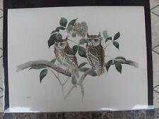 Original  Rex Brasher #373-1  Hand Colored Bird Print Screech Owl  #3731REX2 DSS