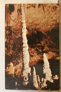 New Mexico NM Carlsbad Caverns National Park Totem Pole Postcard Old Vintage PC