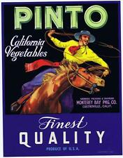 Pinto, vintage California vegetable crate label, horse, cowboy, Monterey Bay