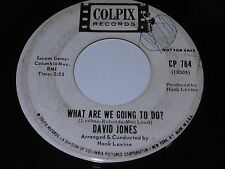 David Jones: What Are We Going To Do? / This Bouquet 45