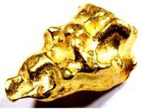 .220+ GRAMS ALASKAN YUKON BC NATURAL PURE GOLD NUGGET HAND PICKED FREE SHIPPING