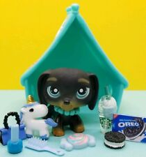 Authentic Littlest Pet Shop #325 Black Dachshund with Blue eyes  & ACCESSORIES