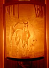 Porcelain Garden Lithophane Night Light Hand Made NR147 COOL WATERS Horse Foal