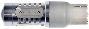 Back Up Light Bulb Dorman 7440R-HP