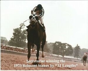 "1973 - SECRETARIAT winning the Belmont Stakes by ""31 Lengths"" - Color - 10"" x 8"""