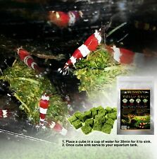 25 PIECE CRYSTAL RED SHRIMP All SPINACH Blend with All Vitamins Nutrients 5G