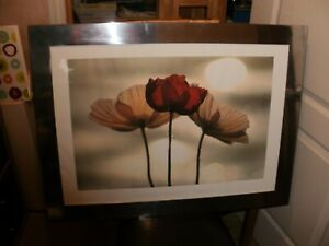 IKEA LARGE METAL PICTURE FRAME WITH POPPIES PRINT.