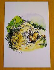 WINNIE-THE-POOH POSTCARD ~ RABBIT CHECKS ON POOH BEAR WHO IS STUCK!  ~ NEW
