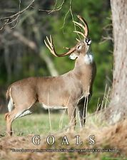Whitetail Deer Motivational Poster Art Buck Deer Antler Sheds Bow Hunting MVP403