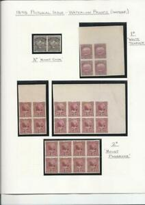NEW ZEALAND 1898 PICTORIAL ISSUE PROOFS  ½d, 1d & 2d VALUES MAINLY IN BLOCKS