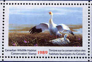 CANADA 1989 DUCK STAMP MINT IN FOLDER AS ISSUED SNOW GOOSE by Jean-Luc Grondin