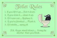 Toilet Rules Blechschild Metallschild Schild gewölbt Metal Tin Sign 20 x 30 cm