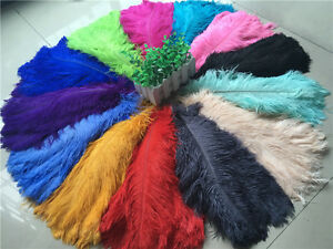 Wholesale, beautiful 10-100pcs special color ostrich feathers 6-16inches/15-40cm