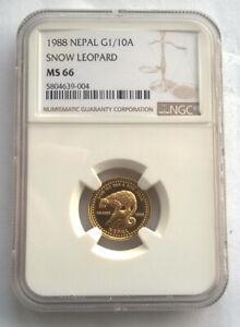 Nepal 1988 Snow Leopard 1/10Asarfi NGC MS66 Gold Coin,UNC