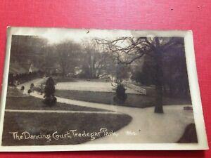 Vintage RP Postcard The Dancing Court Tredegar Park