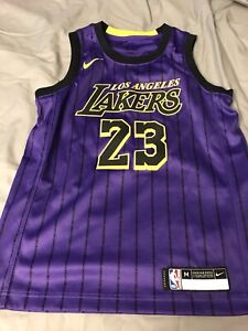 Authentic Lakers GS Boys Lebron Jersey Boys M Purple