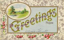 CARTE POSTALE FANTAISIE GAUFREE USA GREETINGS FROM PAYSAGE FLEURS