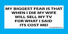 Biggest Fear Wife TV Sony Pioneer Samsung LG Panasonic Funny Sticker C223