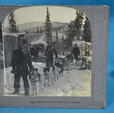 Stereoview Just In From Arctic City Alaska c1900 Fine Art Photographers