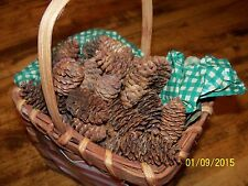50 Natural Spruce Pine Cones for Crafts,Wreaths or Fillers