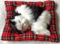 Katze schlafend Deko Stoffkatze Stofftier Kissen schwarz weiß niedlich Dekokatze