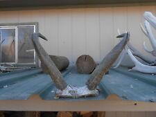 """13"""" PRONGHORN ANTELOPE HORNS antlers whitetail mule mount taxidermy elk rack"""