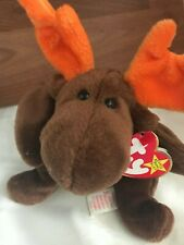 Ty Beanie Baby Chocolate The Moose *Rare* 1993 - Excellent Moose Brown