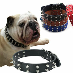 Dog Collar Puppy Spiked Spikey PU Leather Pug Terrier Bull Rivet
