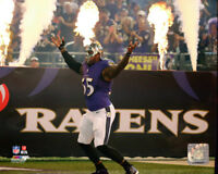 NFL Football Terrell Suggs Baltimore Ravens Photo Picture Print #1386