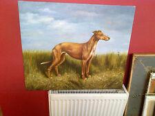 Fine 20th c,English School Oil on Canvas .Greyhound Dog Study.