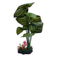 Large Leaf Aquarium Plant, Silk Plant, Fish & Aquatic Life Safe 12 Inch Tall