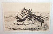 ANTIQUE RPPC COWBOY THROWN OFF A SADDLED GRASSHOPPER #33 BY F.D. CONARD G.G.KS